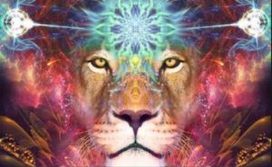 88 Lionsgate